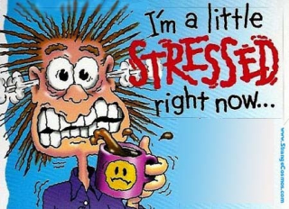 Stress4
